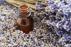 lavander aromatheraphy
