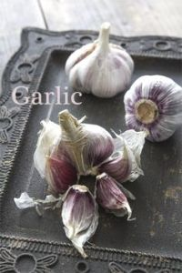 Garlic and collagen production